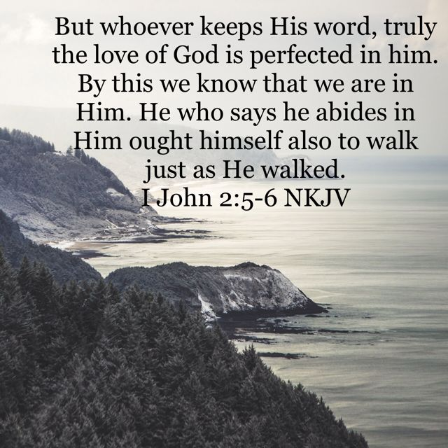 Pin by lorelei mccloskey on The Word! | Psalms, Let god, Amplified bible