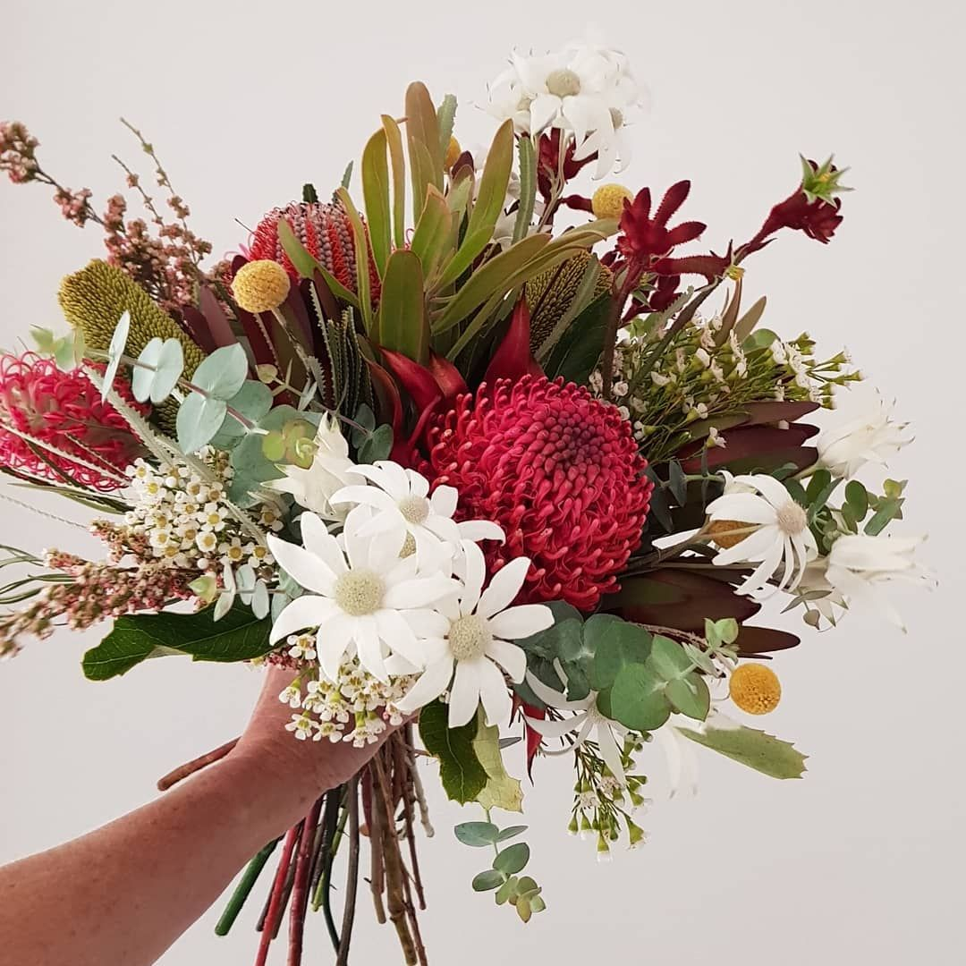 Australian Native Bouquet For My Beautiful English Bride Today If Only Waratahs Had A Australian Native Flowers Australian Flowers Wedding Flower Inspiration