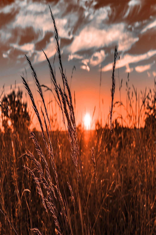 Sunset Wallpaper Western Photography Sunset Wallpaper Aesthetic Backgrounds