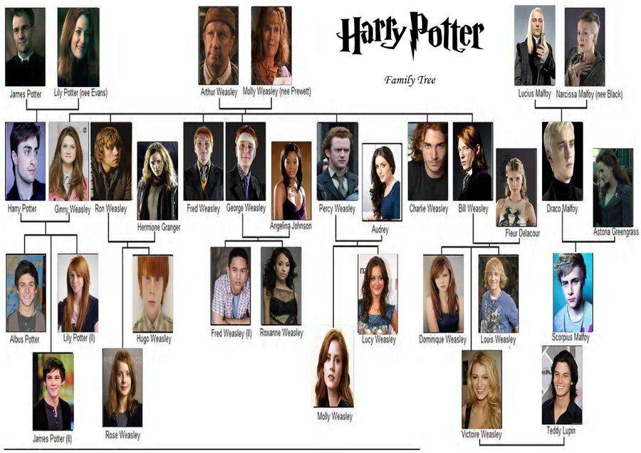 Harry Potter Family Tree Harry Potter Family Tree Harry Potter Characters Harry Potter Characters Names