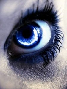 All About Contact Lenses