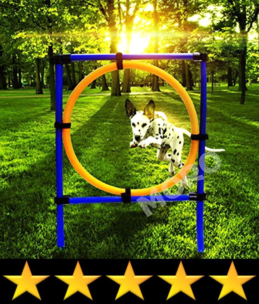 Zoic Pet Dogs Outdoor Games Agility Exercise Training Equipment