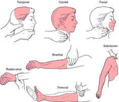 Pressure points a point of extreme sensitivity to pressure human pressure points a point of extreme sensitivity to pressure ccuart Images