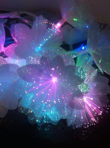 Stunning 20 Colour Changing Fibre Optic Flower Stringfairy Lights