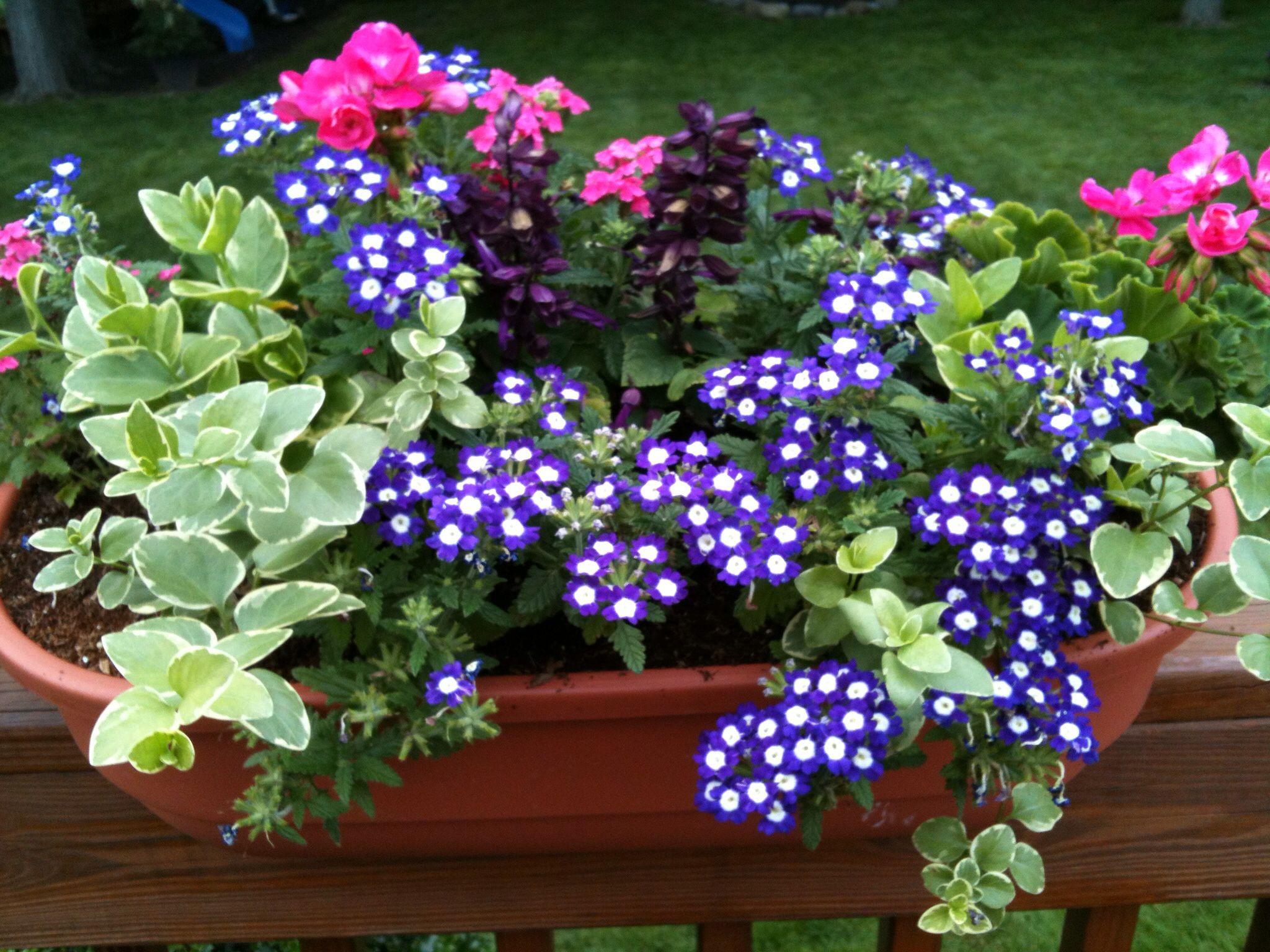 Deck railing planter box