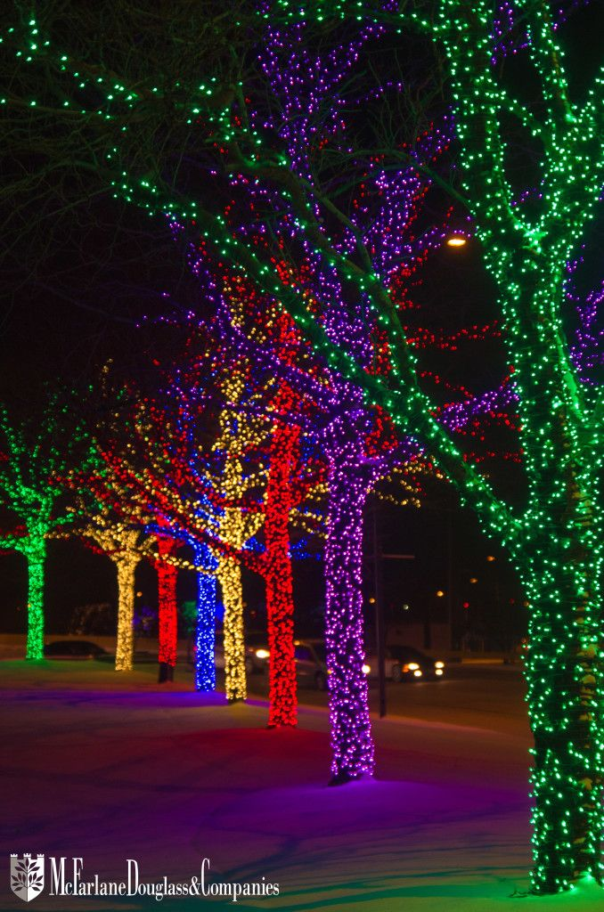 Column of colorful trees lit with bright LED lights at OHare
