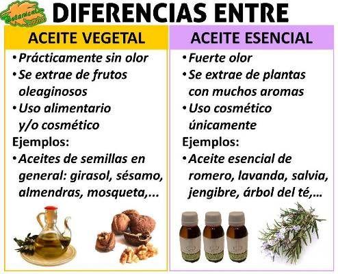 Tecnicas para extraer aceites esenciales de las plantas