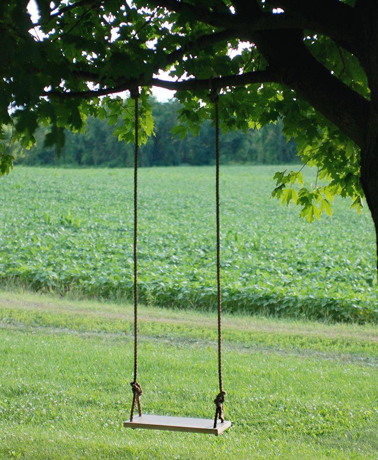 Diy Tree Swing Swings Backyard And Yards