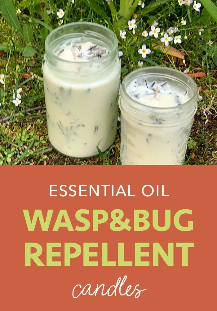 Essential Oil Wasp Repellent Candle Five Spot Green