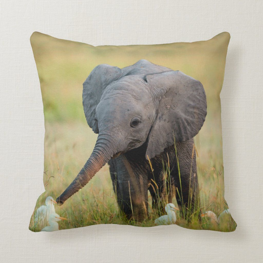 Baby Elephant and Birds Throw Pillow | Zazzle.com