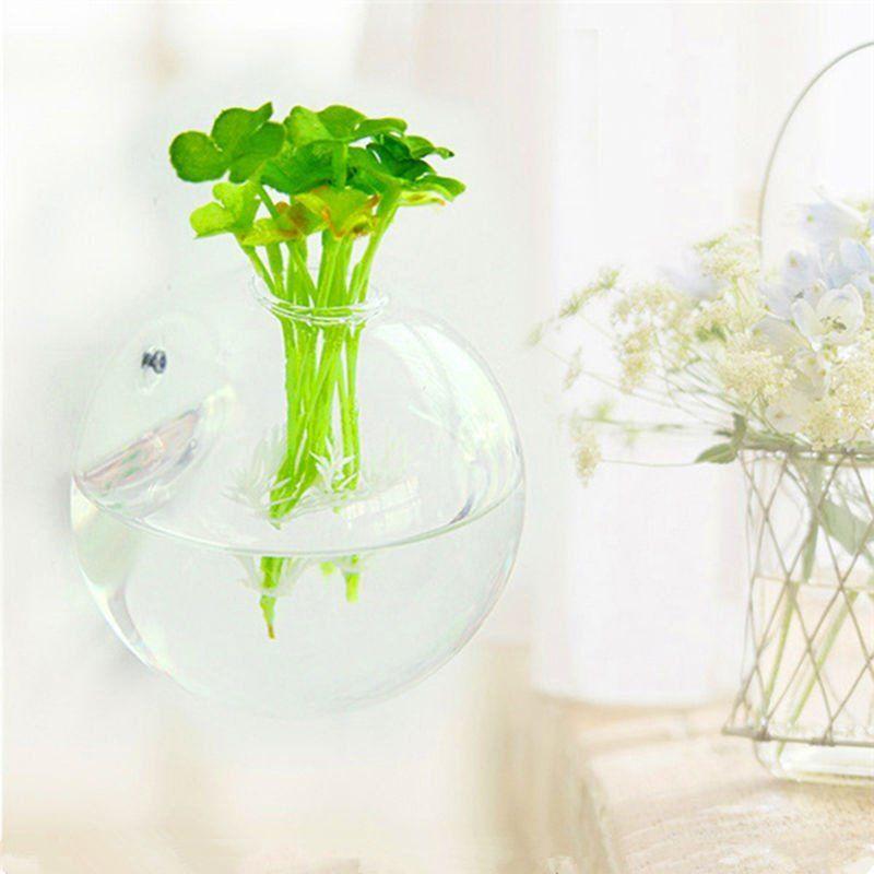 Hanging flower pot glass ball vase terrarium wall fish