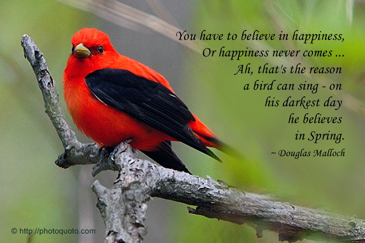 Beautiful Spring Day Quotes Sayings Quotes Douglas Malloch