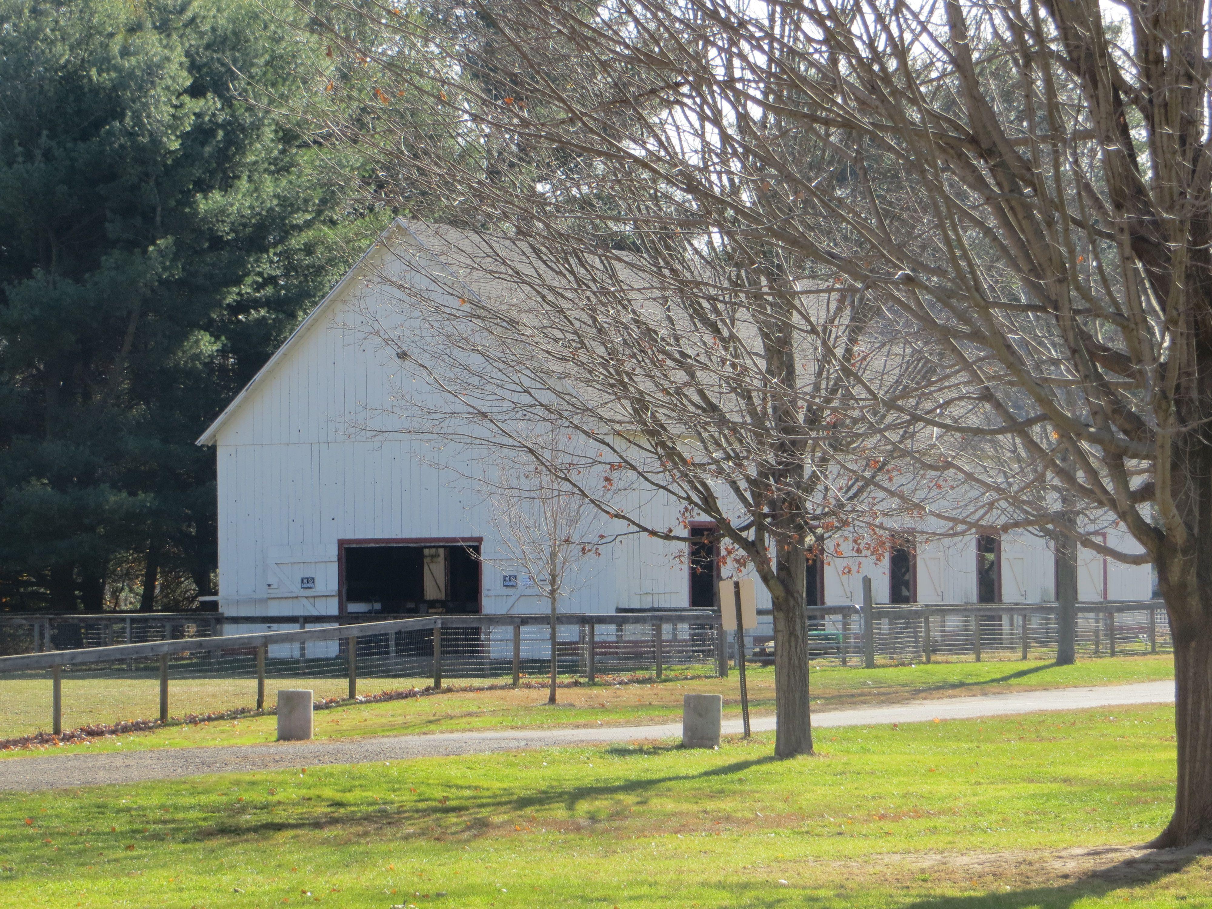 the animal barn