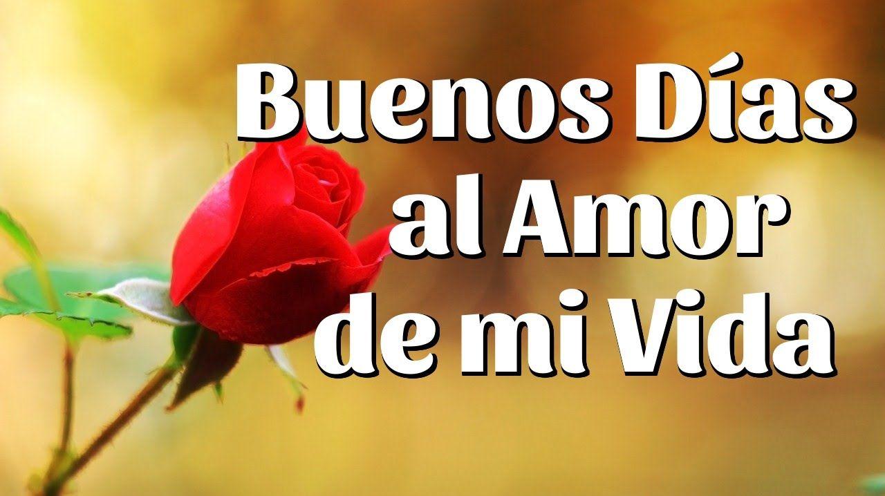 19 Imagenes De Buenos Dias Mi Amor Buenos Dias Amor Frases De