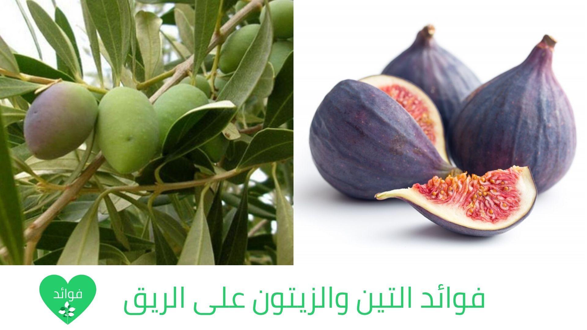 فوائد التين والزيتون على الريق لن تتوقف عن تناولهم بعد معرفة فوائدهم Vegetables Onion Eggplant