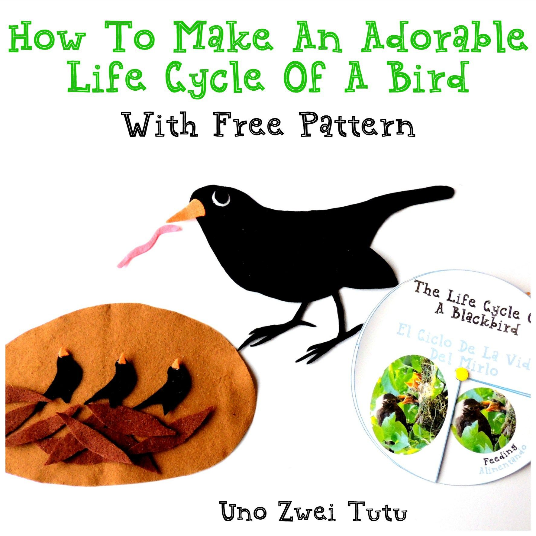 How To Make An Adorable Bird Life Cycle Using Only Felt