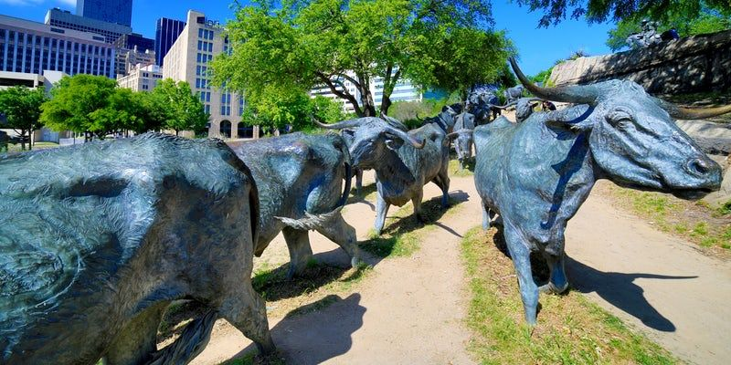 Dallas has a reputation for glitz and glamour, but there's lots you can do on a budget. See our list of free attractions and cheap things to do.