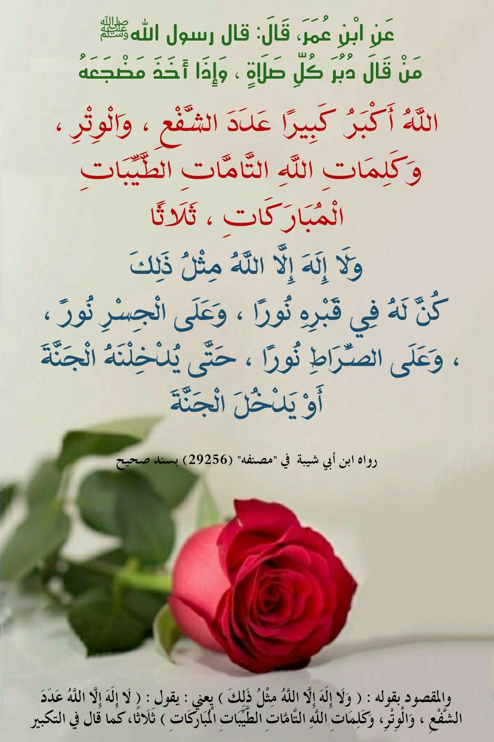 Pin By Sura On احاديث Android Wallpaper Rose Hadeeth