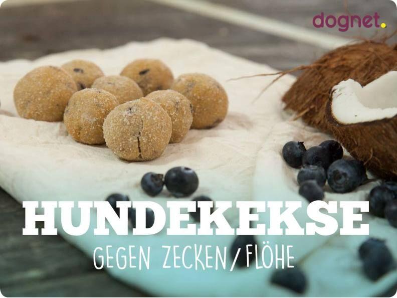 hundekekse gegen zecken fl he katz hund dog food. Black Bedroom Furniture Sets. Home Design Ideas