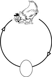 Kip of het ei