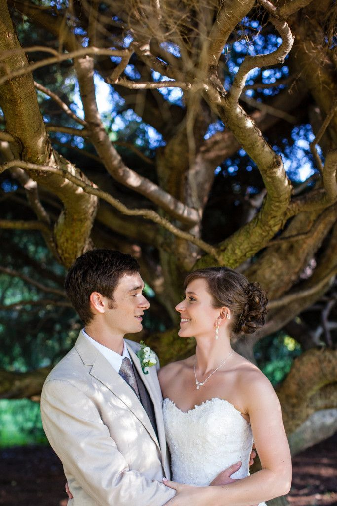 Portrait of bride and groom beneath twisted tree branches | Tyler Arboretum Wedding by Ashley Gerrity Photography