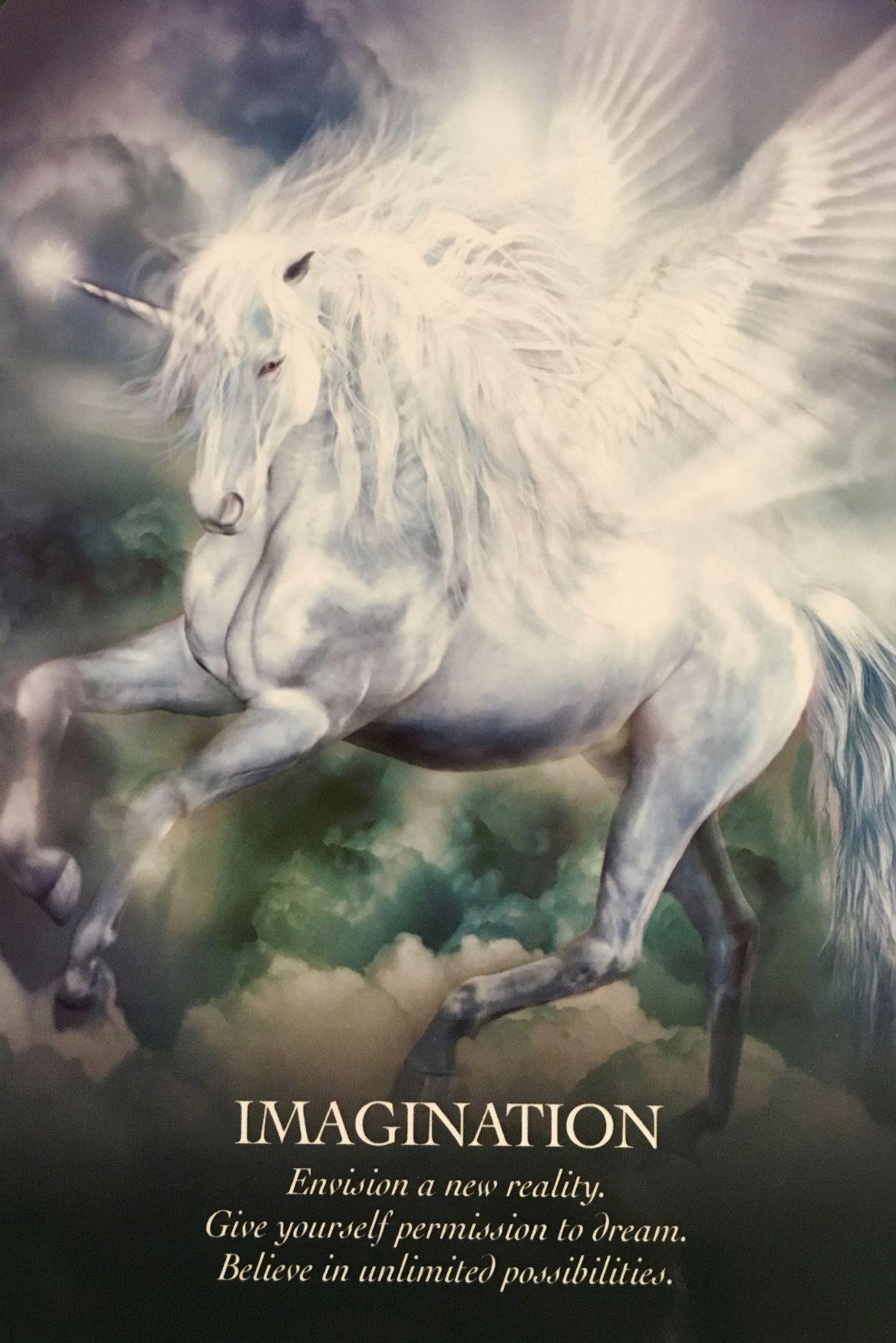 Certified Angel Card Reader by Doreen Virtue, Radleigh