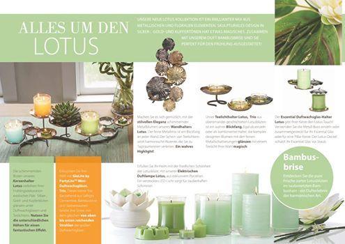 Alles über das Produkt der Lotus Ab 1.April bis 21.April im Angebot für Gäste und Gastgeberin