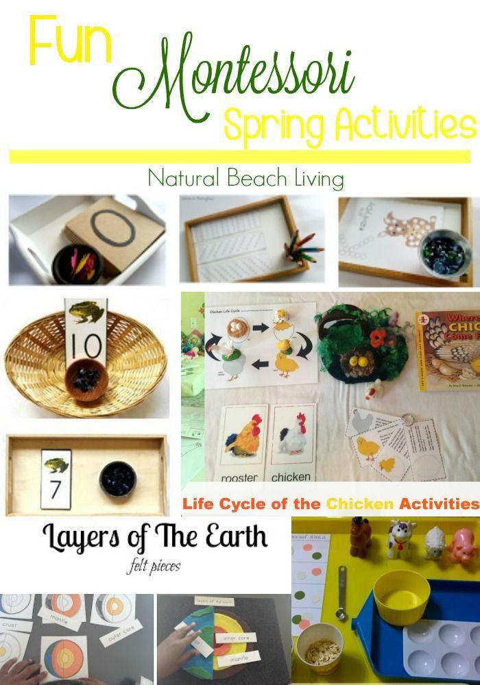 a7aa2f660f5 Fun Montessori Spring Activities