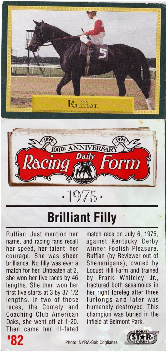 Greatest Filly Ever Scan Of Ruffian Trading Card In Daily Racing