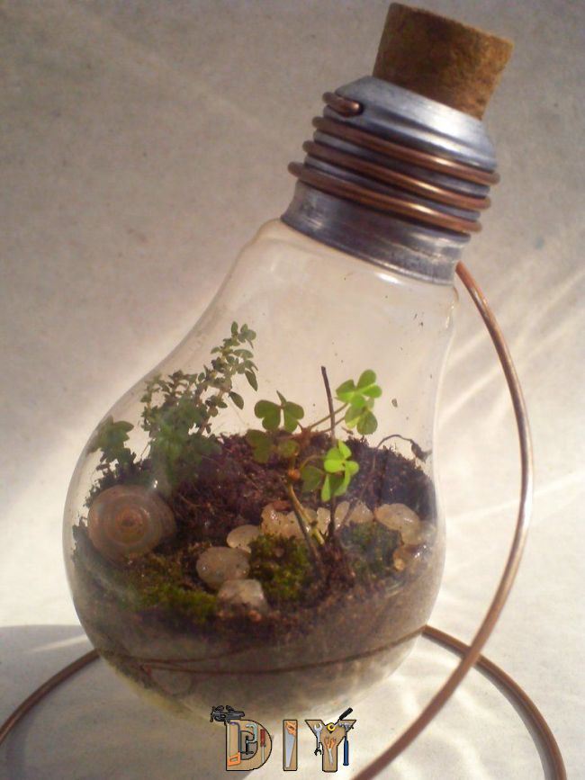 Light Bulb Terrarium 29 04 11 By Kosmu On Deviantart Light Bulb