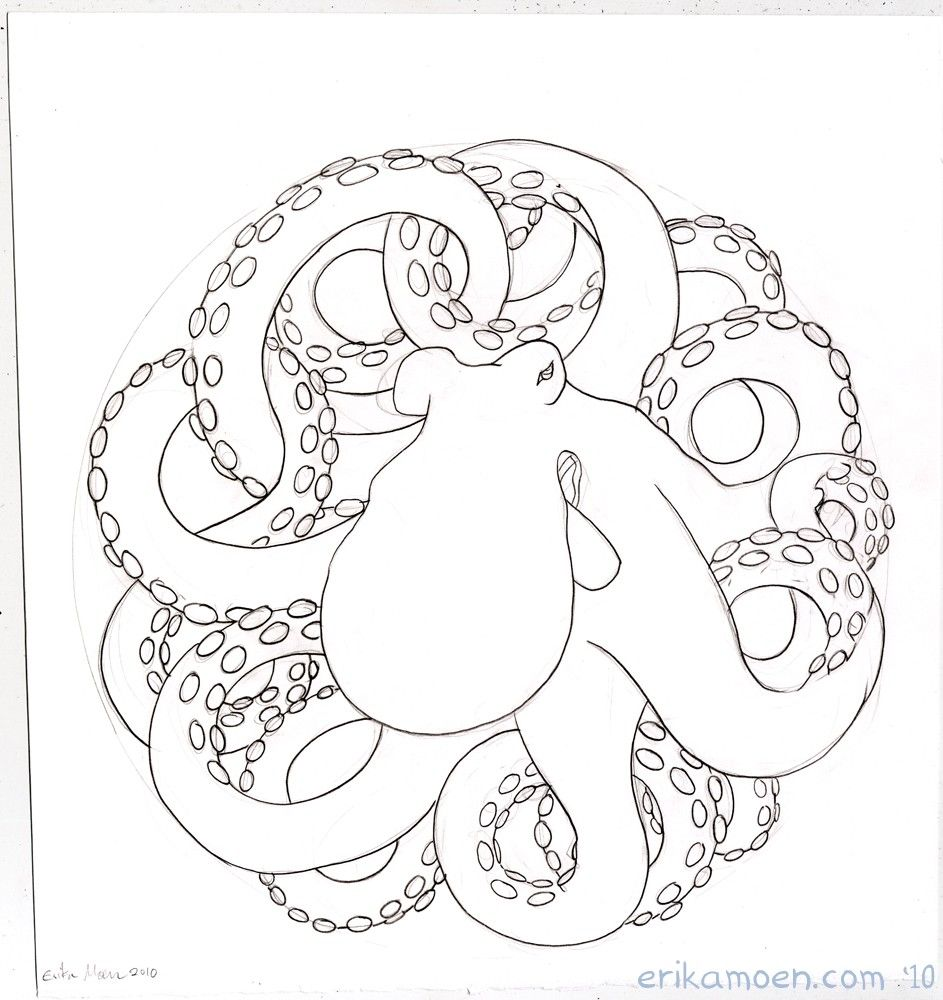 octopus drawing black and white - Google Search | Animals Art ...