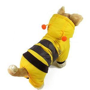 Is it a bee or a Yorkie? > Get yours here: http://bit.ly/1jpy8mD