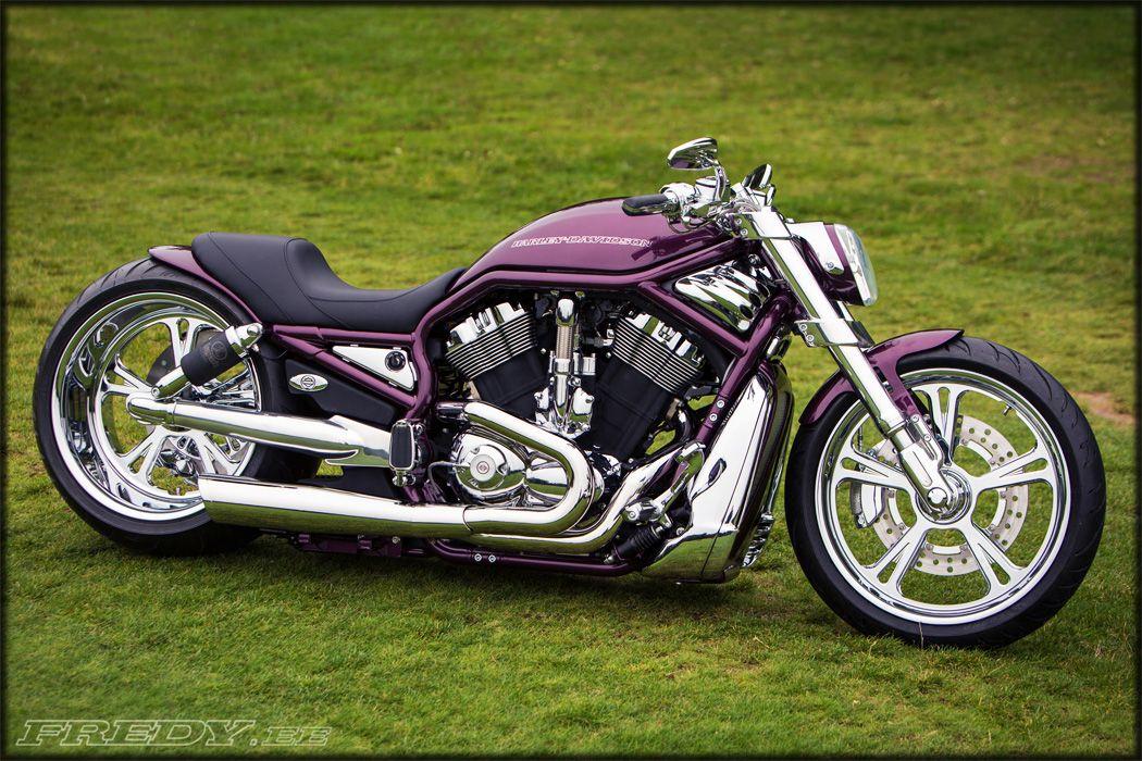 '02 Harley-Davidson VRSCA V-Rod