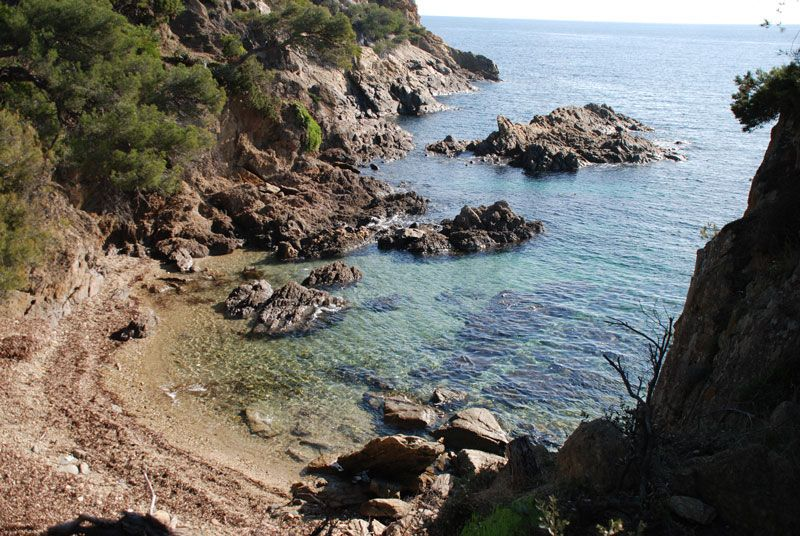 La plage du rossignol office de tourisme le lavandou plages beaches pinterest le - Le lavandou office de tourisme ...