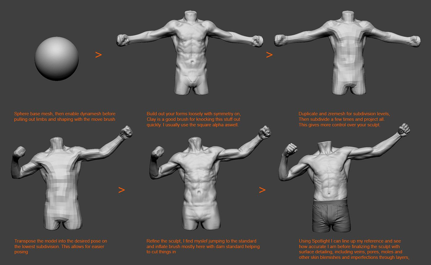 ArtStation - Torso Study, tom parker