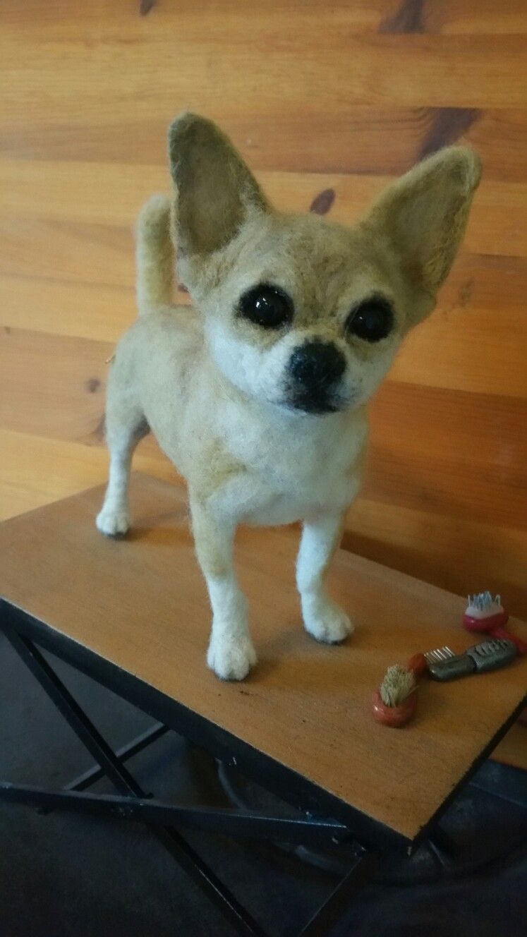 A #ChicktinCreations #needlefelted #Chihuahua