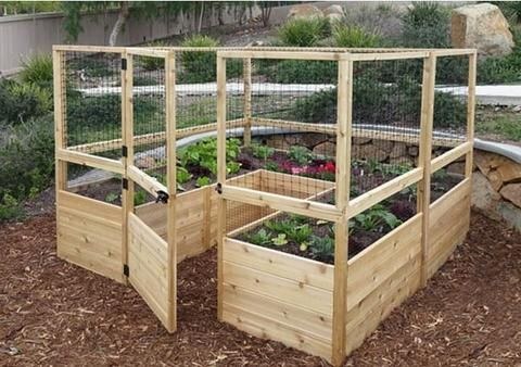 Outdoor Living Today Raised Garden Bed 8 X 8 With Deer Fence Kit Cedar Garden Raised Garden Cedar Raised Garden