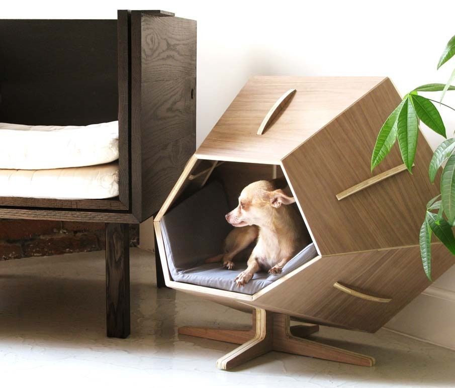 Designer dog  cat bed Using a half sheet of plywood Barnacle is