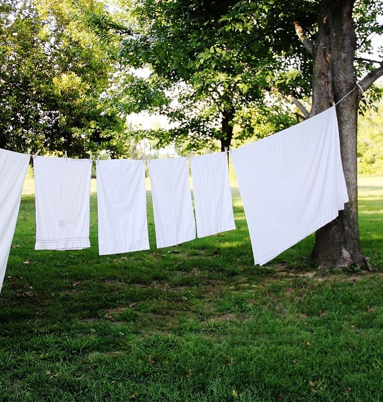 thistlewood farms - clothes line