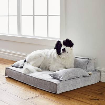 Moderno Pet Bed Frontgate Comfy couch pet bed, Couch