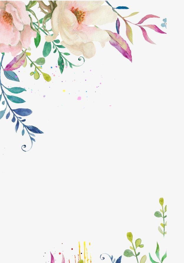 Hand Painted Flower Border Flower Clipart Hand Painted Flowers