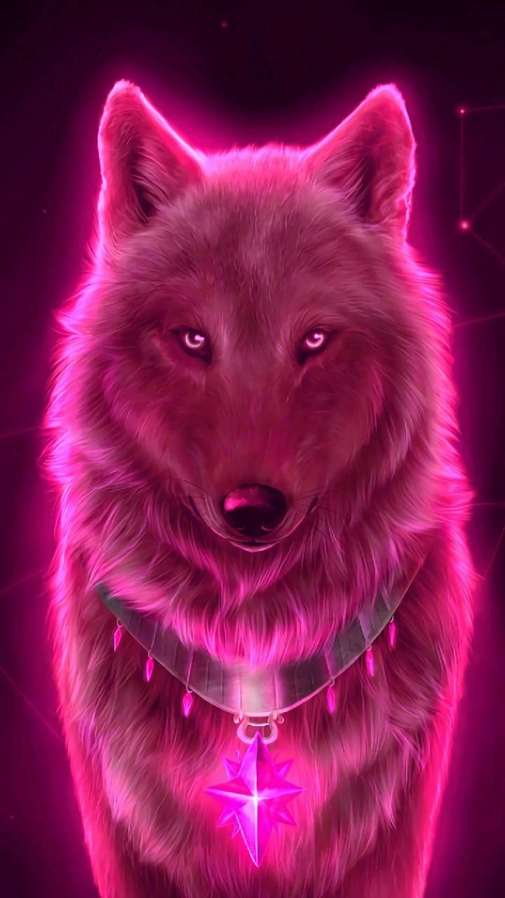 Download Red wolf Wallpaper by georgekev - 1f - Free on ...