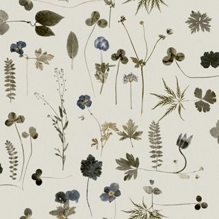 Botanica 3660 - Eco Simplicity - Eco Wallpaper