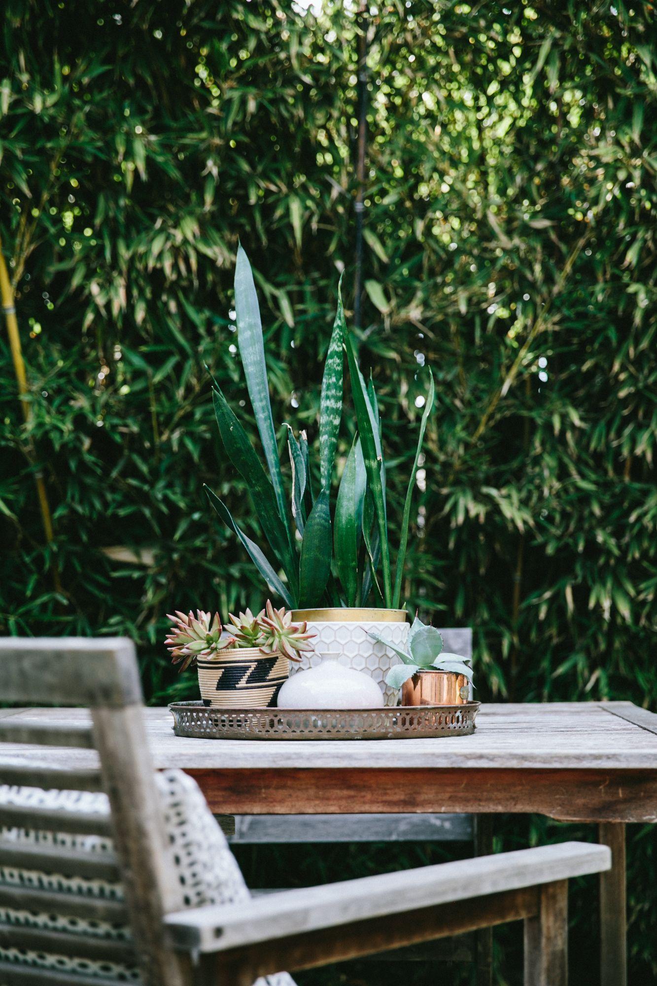 backyard decor | Home | Pinterest | Backyard, Gardens and Patios