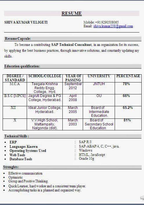 curriculum vitae phd Sample Template Example ofExcellent Curriculum - resume format for mca