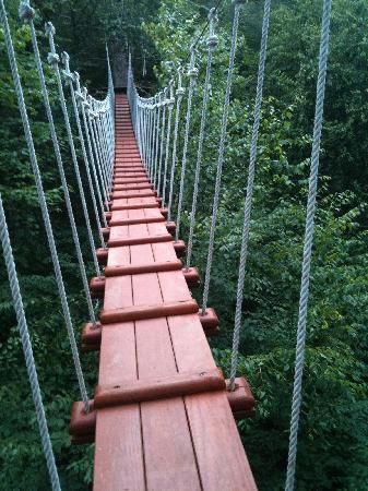 CLIMB Works Canopy Tour- the ultimate treetop zip line adventure. Not only is it & CLIMB Works Canopy Tour- the ultimate treetop zip line adventure ...
