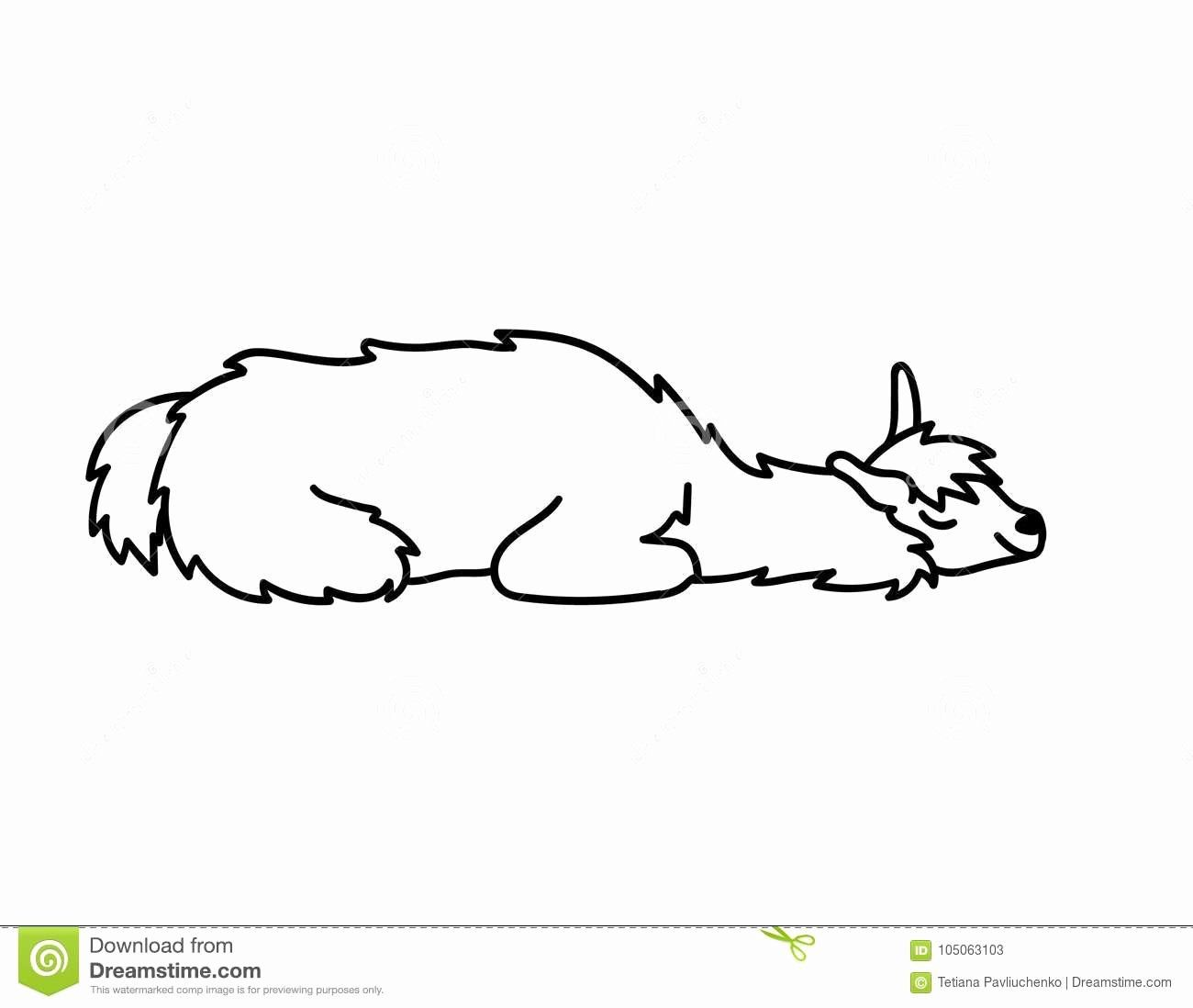 Cute Baby Animal Coloring Pictures Best Of Vector Illustration
