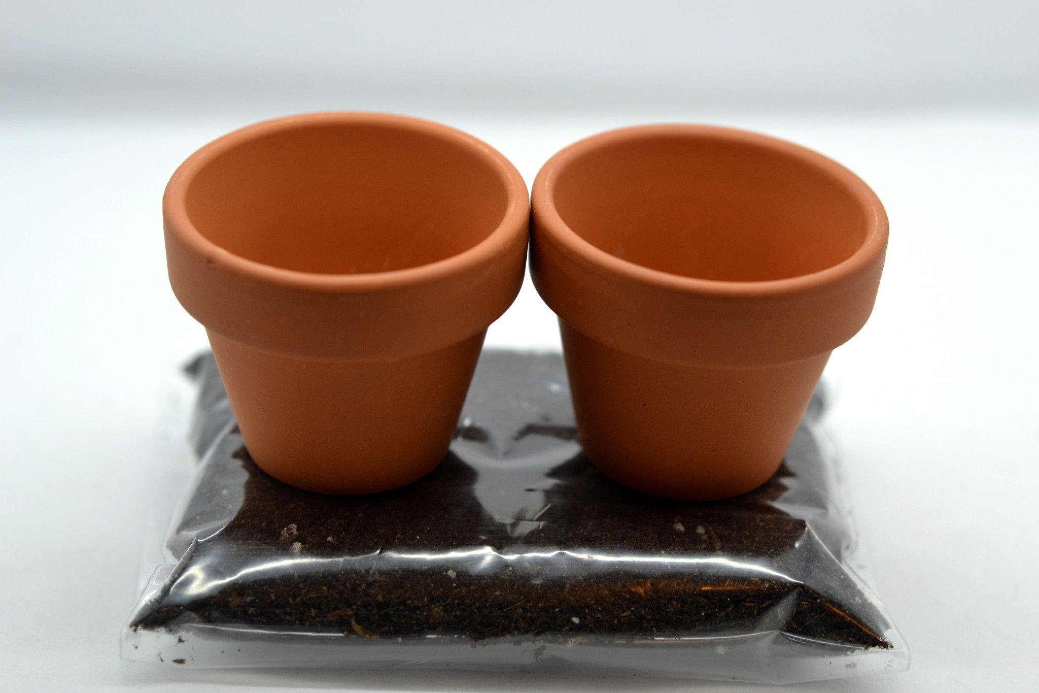 Miniature Clay Pot With Cactus Soil Transplanting Kit 2 Pots Miniature Clay Pots Clay Ceramics Clay Pots