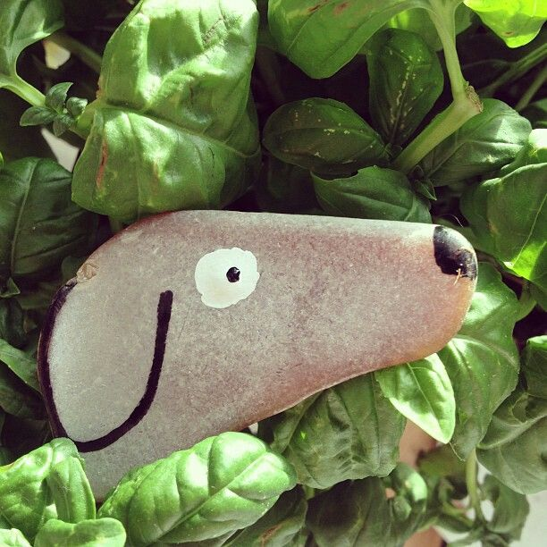 #rock #dog #creative #diy #dobraya @jean_jullien