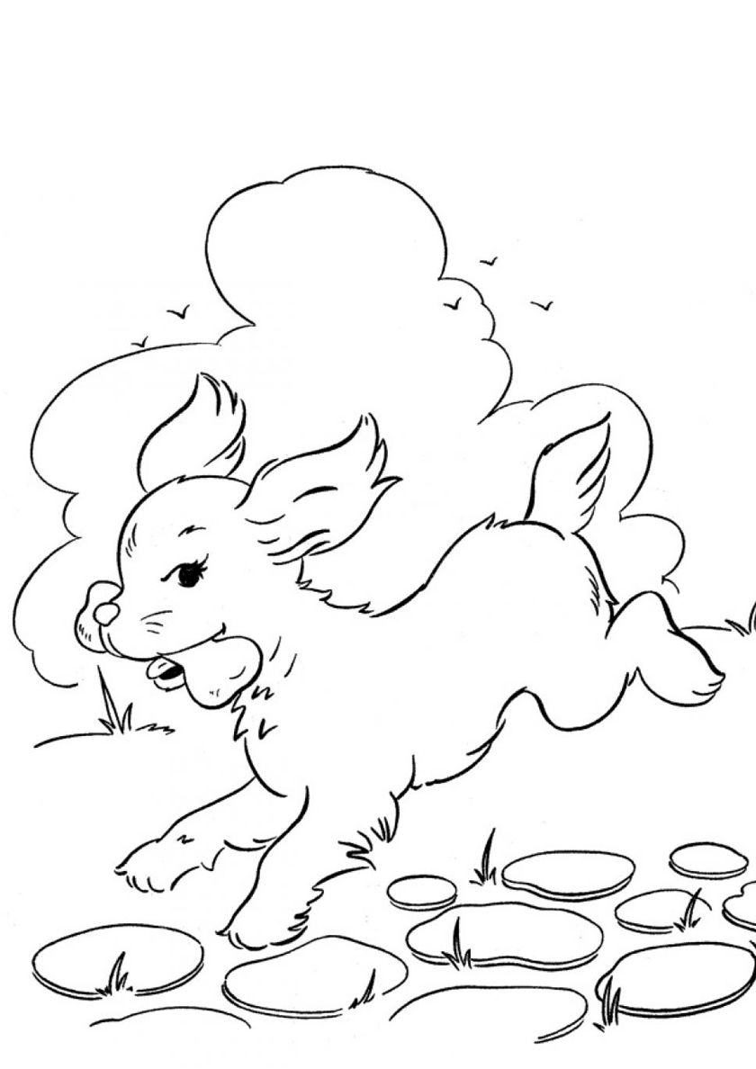 Stolen Bone In 2020 Dog Coloring Page Dog Coloring Book Coloring Pages